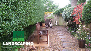 Professional Landscaping Services - Final Results
