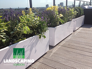 Roof Terrace Landscaping Services